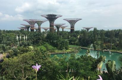 singapore-gardens-3