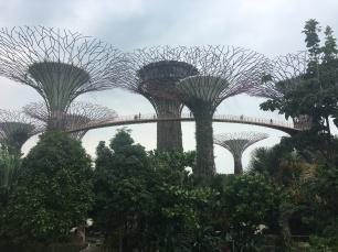 singapore-skyway-2