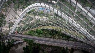 singaporeedits_13