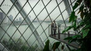 singaporeedits_15