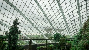 singaporeedits_16