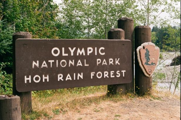 35mm Canon AE-1 • Kodak Portra 400 • Olympic National Park, WA