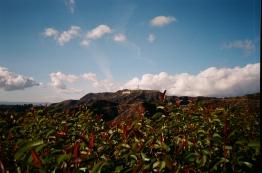 35mm / Nikon OneTouch AF • FujiFilm XTRA 400 35mm• San Jose, CA