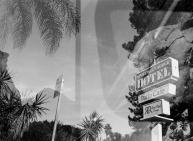 35mm/NikonL35AF • KodakTriMax400 • Studio City, CA