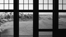 Leica M2 / Kodak Trix 400 @ 800 / Ventura CA