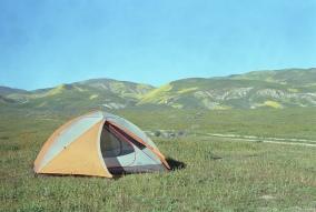 Mamiya RB67ProS / Lomo 800 / Carizzo Plain, CA